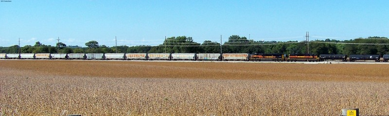 Iowa Interstate 156, 506 brings 44 hoppers thru Interchange track 952 on the CRANDIC.